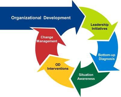Organizational Development Pursuit Of Excellence