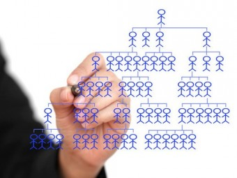 organizational-design